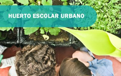 Huerto escolar urbano