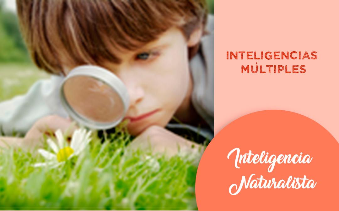Inteligencia Naturalista Recursos Y Actividades Para Trabajar La Inteligencia